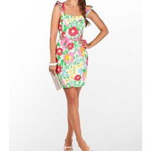 Lilly Pulitzer Sarafina dress 12